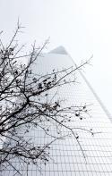 WTC_01