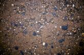 Texture - Concrete 04