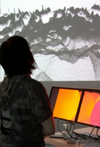 Screengrab2 :: Exhibition Opening, 2010